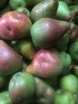 Gifford pears